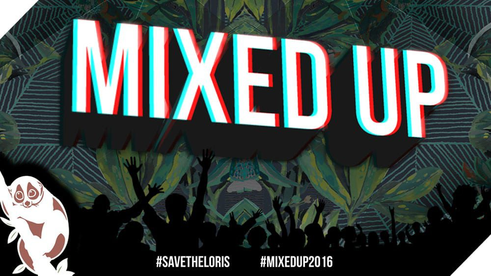 2016 Mixed Up Banner